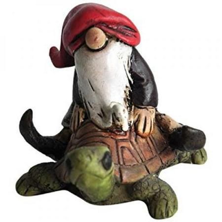 Top Collection Miniature Fairy Garden and Terrarium Gnome Riding on Turtle Statue](Fairy Garden Terrarium)