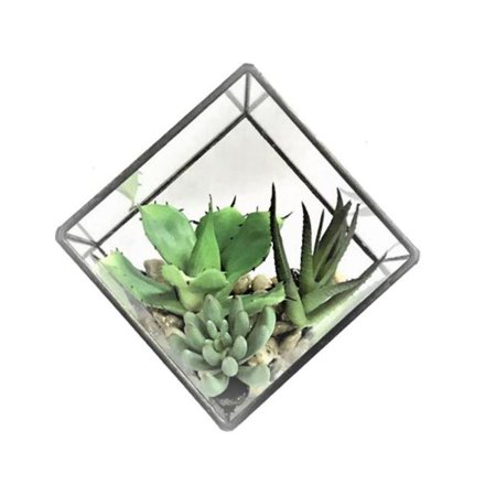 Vickerman FM181101 5.5 in. Green Succulents Diamond Terrarium - image 1 of 1