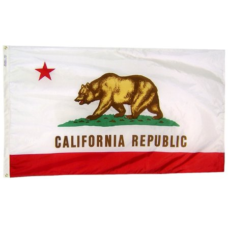 Nylon California State Flag - California State Flag 3x5 ft. Nylon Official State Design Specifications.