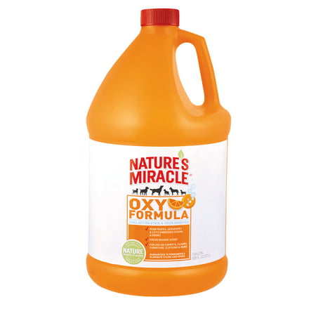 Nature's Miracle Oxy Formula Dual Action Stain & Odor Remover, 1