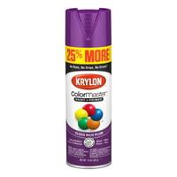 Krylon ColorMaster Paint + Primer Gloss Rich Plum, 15-Oz