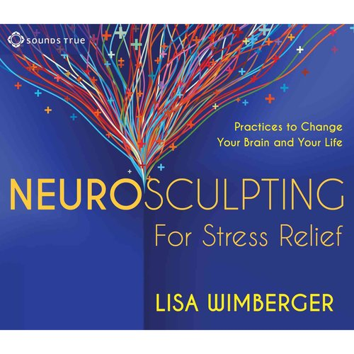 Neurosculpting for Stress Relief: Practices to Change Your Brain and Your Life