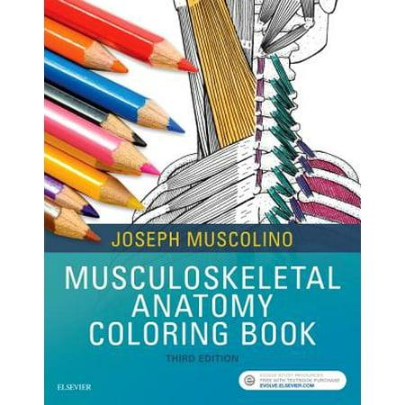 Musculoskeletal Anatomy Coloring Book - Walmart.com
