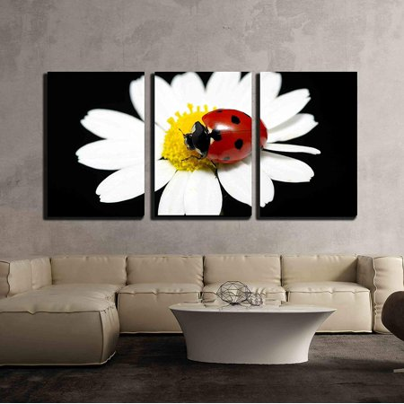 wall26 - 3 Piece Canvas Wall Art - the Ladybug Sits on a Flower Petal - Modern Home Decor Stretched and Framed Ready to Hang - 16