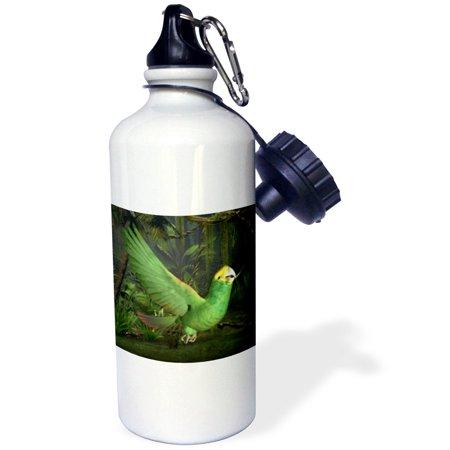 3dRose Deep Yellow Amazon Parrot, Sports Water Bottle, (Parrot Water Bottles)