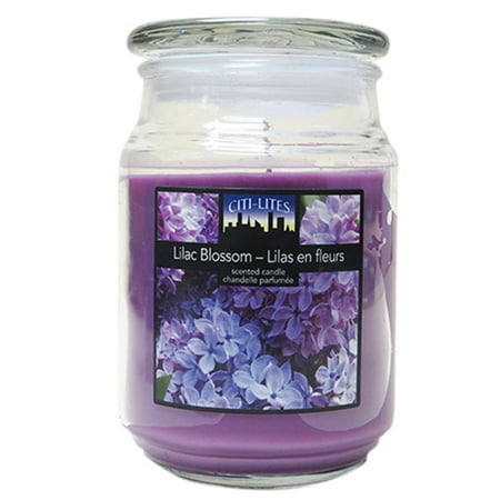Citi-Lites 18 Ounce Apothecary Jar-Lilac Blossom 104087 - image 1 of 1