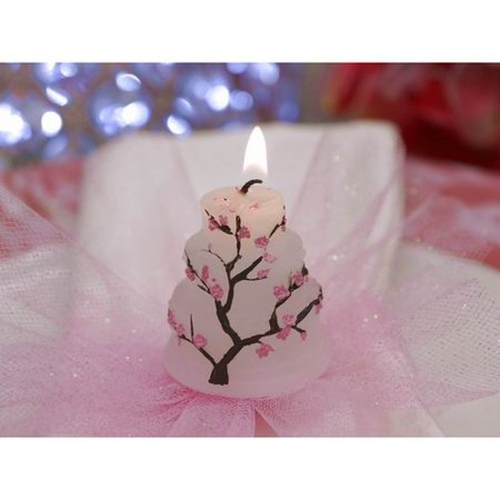 My Happiest Moment! Special Cake Candle Favor - 1 pc
