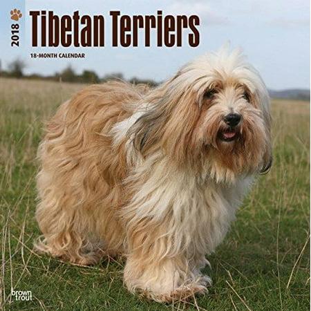 Tibetan Terriers 2018 Calendar