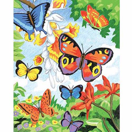 Royal Colour Pencil by Numbers Kit: Butterflies - 8.75 x 11.75