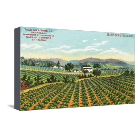 View of the Giersberg Vineyard - Napa, CA Stretched Canvas Print Wall Art By Lantern Press (Halloween City Napa Ca)
