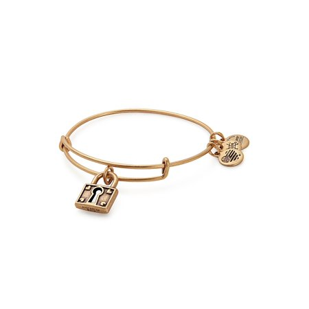 c590ddab2239e3 Alex and Ani - Unbreakable Love Charm Bangle Bracelet - Walmart.com