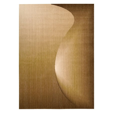 Radiant Arts RA01 Area Rug by Nourison ()
