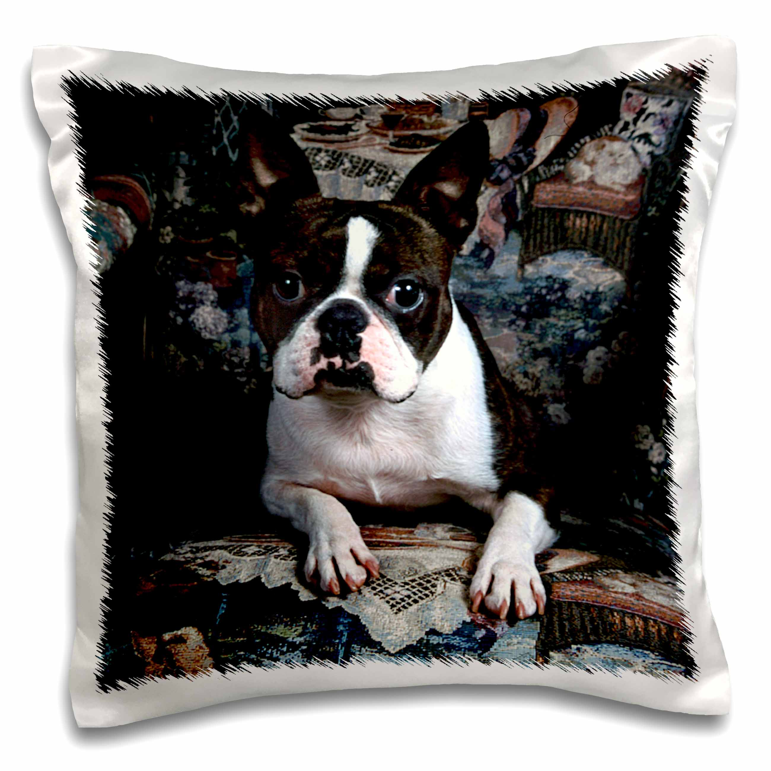 3dRose Boston Terrier Philippe, Pillow Case, 16 by 16-inch