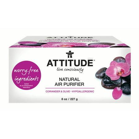 Attitude Live Consciously Natural Air Purifier, Coriander & Olive, 8 Oz