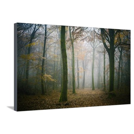 Copper Ambiance Art (Ambiance Ephemere Stretched Canvas Print Wall Art By Philippe Manguin )