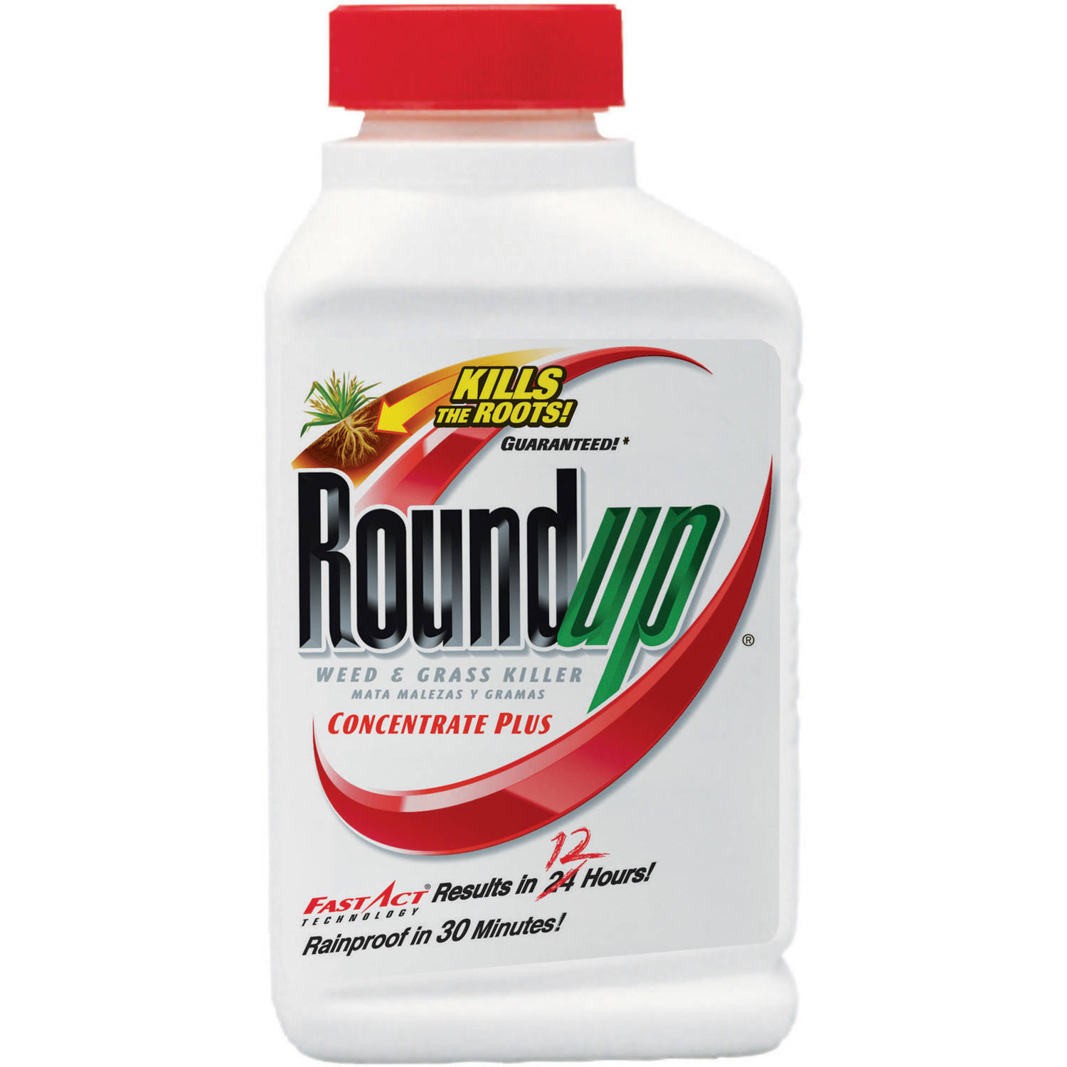 Roundup Weed & Grass Killer Concentrate Plus, 16 oz