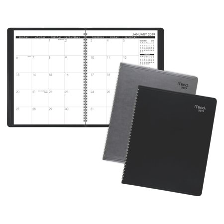Mead Professional Monthly Planner - Clearance