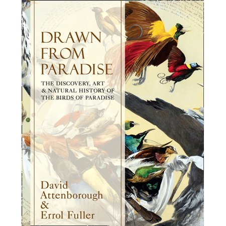 Drawn From Paradise: The Discovery, Art and Natural History of the Birds of Paradise - (Bird Of Paradise King)