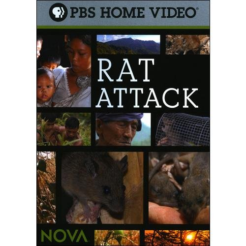 NOVA: Rat Attack (Widescreen)