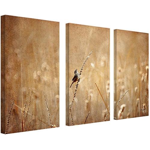"Trademark Fine Art ""Bird"" Canvas Wall Art by Lois Bryan, Three 16x32 pieces"