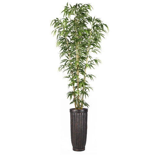 Laura Ashley Home Bamboo Tree in Planter