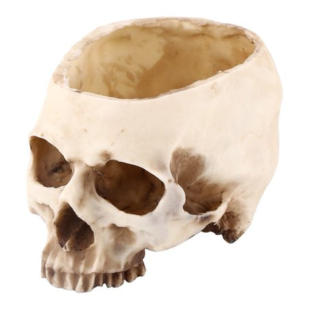 Artificial Resin Skull Head Flower Pot Plant Bowl Container Garden Planter Multifunctional Tabletop Storage Tank Replica Skeleton Model Home Bar Table Decor Halloween Ornament