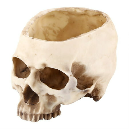 Artificial Resin Skull Head Flower Pot Plant Bowl Container Garden Planter Multifunctional Tabletop Storage Tank Replica Skeleton Model Home Bar Table Decor Halloween Ornament - Halloween Grove Gardens