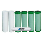 Watts Premier One Year Green Carbon Annual Filter Kit