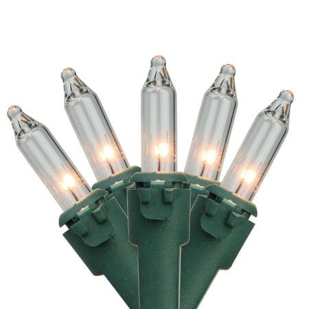 Mini Net (4' x 6' Clear Mini Twinkling Net Style Christmas Lights - Green Wire )