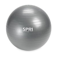 SPRI Weighted Ball, 65CM