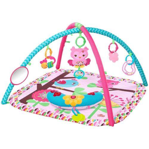 Bright Starts Pretty In Pink Happy Tweets Activity Gym