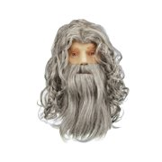 Star Power Wizard Warlock or Sorcerer Beard & Wig, Grey, One Size