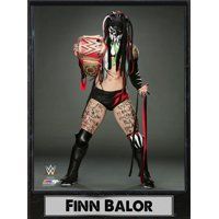 9x12 Photo Plaque - Finn Balor