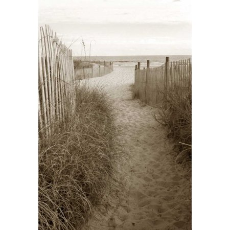 Beach Trail 1 Stretched Canvas - Amber Light Gallery (12 x 18)