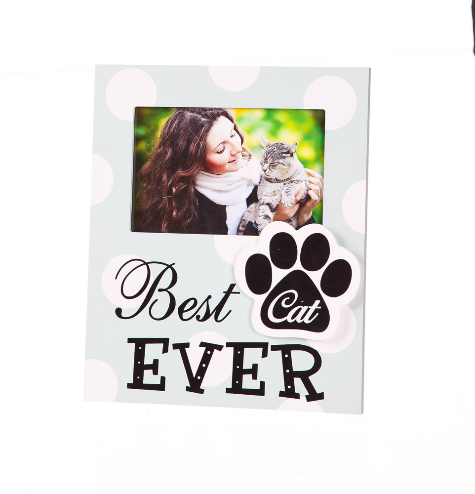 Best Cat Ever Polka Dot Wood 4x6 Picture Frame