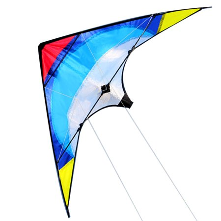 Iuhan Outdoor Fun Double-line Flying Fish Reproduce Stunt Kite Beginners Must