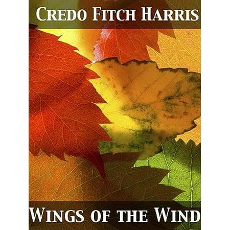 Wings of the Wind - eBook