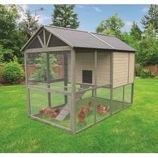 Innovation Pet Inc Coops Feathers Walk In Wooden Chicken Coop Hen House