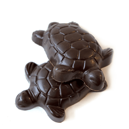 Turtle Chocolate Turtles - Chocolate Turtle