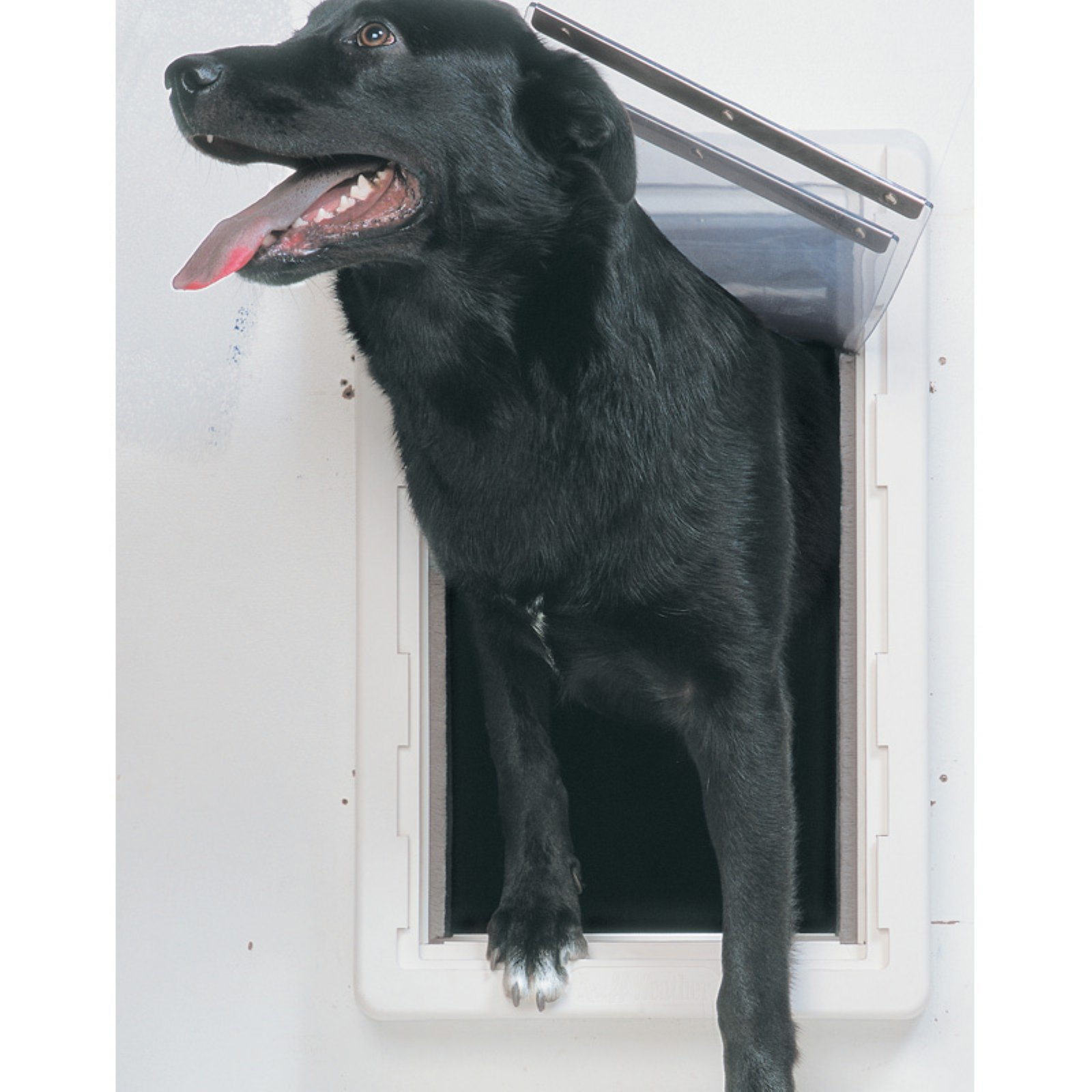 Ideal Perfect Pet All Weather Wall Tunnel