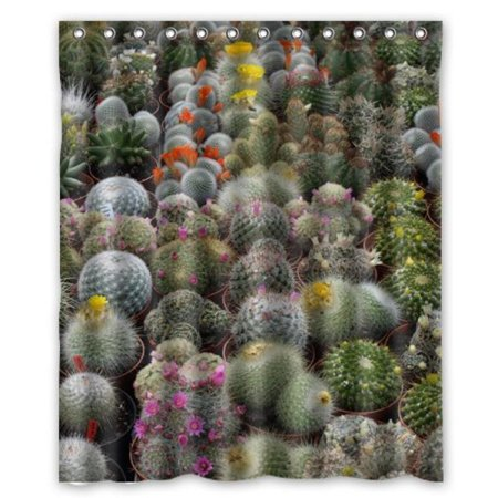 Different Kinds Of Cactus Shower Curtain 60 X 72 Inch Bathroom