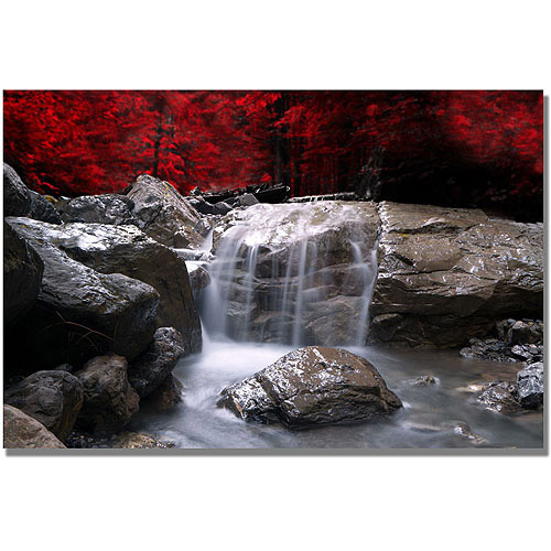 "Trademark Art ""Red Vison"" Canvas Wall Art by Philippe Sainte-Laudy"