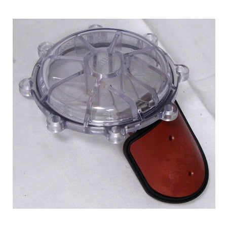 Jandy Cover with Flapper & O-Ring, Large Check Valve 7307 R0466000