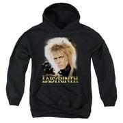 Labyrinth Jareth Big Boys Pullover Hoodie