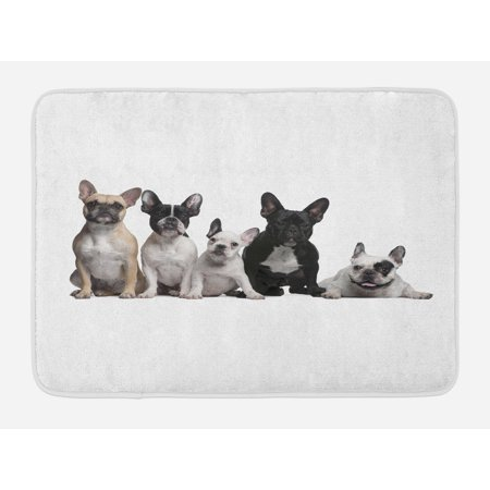 Adorable Kitchen (Bulldog Bath Mat, Group of Young French Bulldogs with Adorable Expressions Animal Lover Photo, Non-Slip Plush Mat Bathroom Kitchen Laundry Room Decor, 29.5 X 17.5 Inches, Black White Beige, Ambesonne )