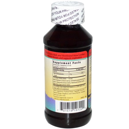 Herbs for Kids Elderberry Syrup Respiratory Support Liquid, 4 Fl Oz