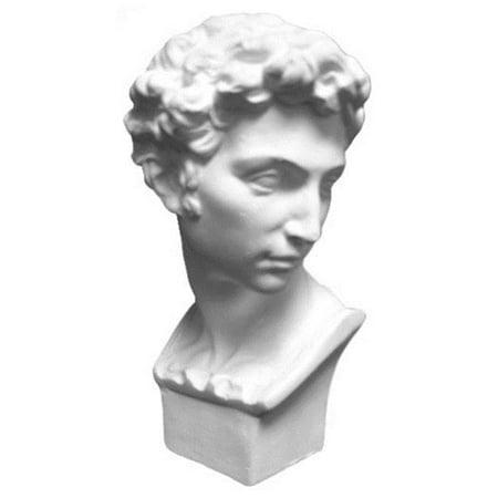 - Torino GES-200-5 Plaster Cast Mini Head Of David Sculpture