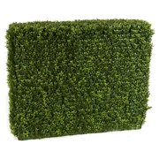 Autograph Foliages A-144330 23 x 11 x 12 in. Boxwood Hedge, Tutone Green