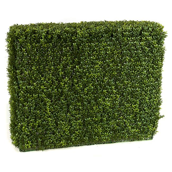 Autograph Foliages A-144335 Boxwood Hedge, Tutone Green