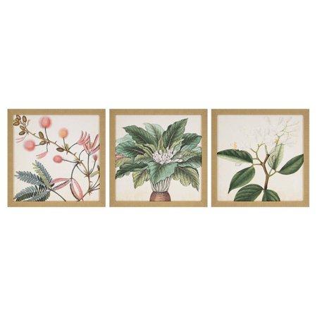 Paragon Garden (Paragon Garden II Framed Wall Art - Set of 3 )